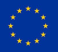immagine bandiera UE